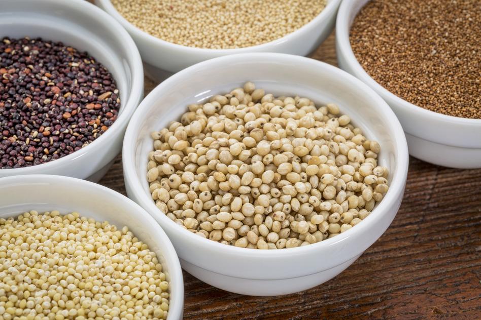 sorghum gluten free grain